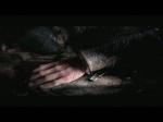 Trailer | Assassin's Creed Revelations Videos