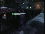 Amusement Mile - Claiming a Selection of Trophies #3 | Batman: Arkham City Videos