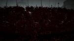 Launch Trailer | Datura Videos