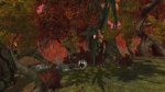 Ethernere Afterlife Realms Video | EverQuest II: Destiny of Velious Videos