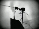 Limbo Chapter 22
