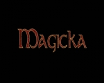 Developer Interview | Magicka Videos