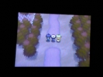 Capturing Pokemon Explained | Pokemon Black Videos
