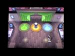 The Three Leader Gym Battle | Pokemon Black Videos