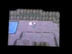 Trolling for Shaking Dirt | Pokemon Black Videos