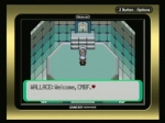 Pokemon Emerald The Champion Battle