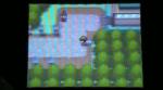 Hatching Togepi | Pokemon Heart Gold Videos