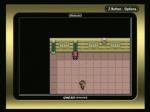 Fuchsia City Gym Battle | Pokemon LeafGreen Videos