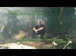 Video: Episode 1 | Risen 2: Dark Waters Videos