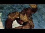 Gameplay Trailer   Street Fighter X Tekken Videos