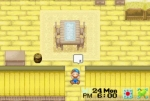 harvest moon friends of mineral town money cheat code breaker