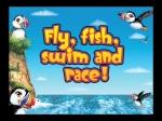 Puffins Island Adventure Trailer